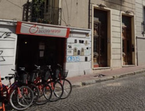 Tour Buenos Aires by Bicycle – Cobblestones and the Reserva Ecológica